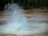Upper Geyser Basin 5