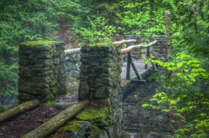 Cold Brook Bridge to Amphibrach Trail