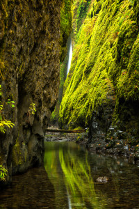 Oneonta Gorge 8