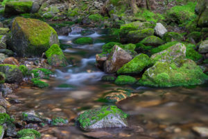 Castle Brook 2 8.0 sec @ f11 49mm ISO 200