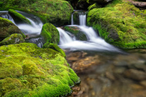Castle Brook 1 2.0 sec @ f11 38mm ISO 50